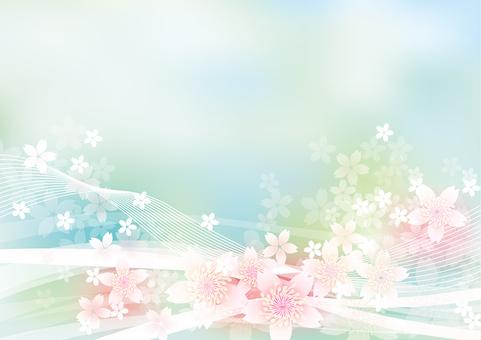 Cherry Blossoms & Line 3