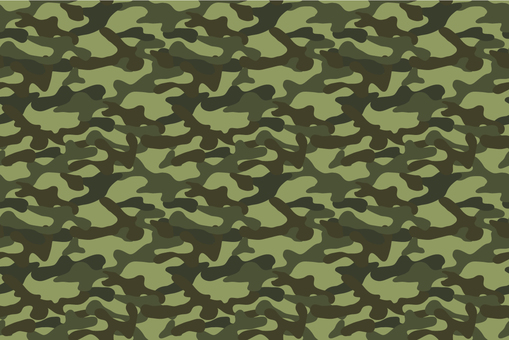 Camouflage Pattern _ Brown
