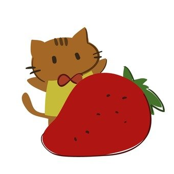 Cat and strawberry