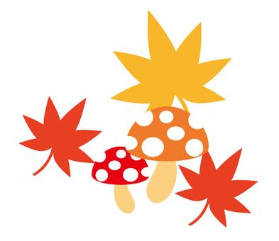 Mushrooms and autumn leaves