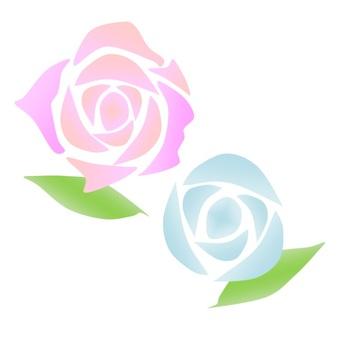핑크와 블루의 장미