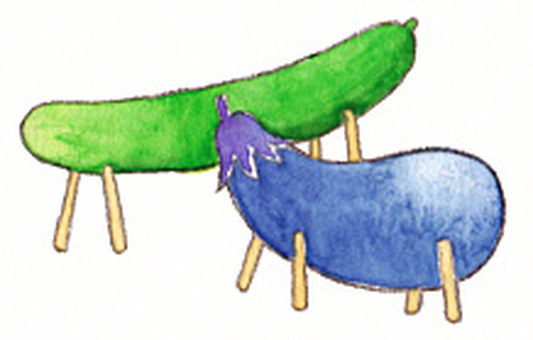 Cucumber horse, eggplant cattle