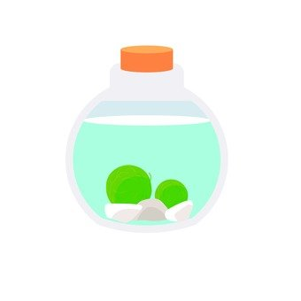 Marimo in the bottle