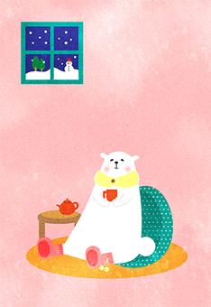 White bear postcards cold cold winter winter