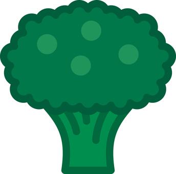 브로콜리 야채 야채