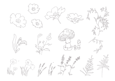 Plants - Hand-drawn set