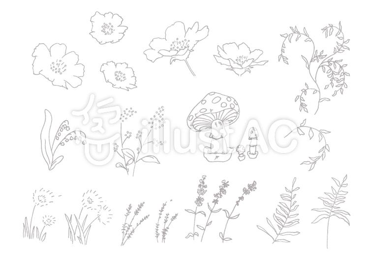 手描き植物セットのイラスト