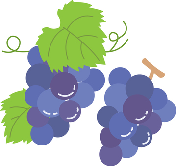【Food】 Grape
