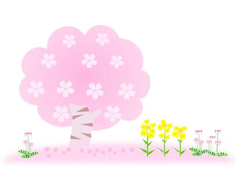 벚꽃 나무와 봄 들꽃
