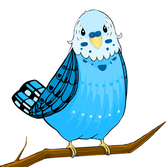 Blue little bird