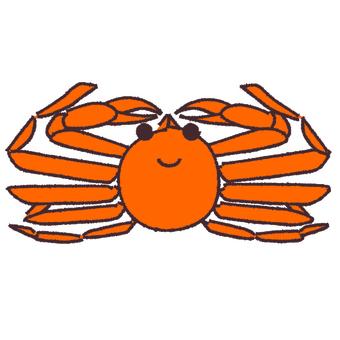 Snow crab