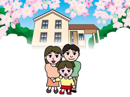 父母和孩子的四季(7)我家春天的櫻花