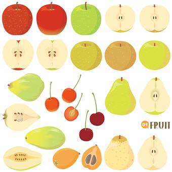 과일 세트 장미과 편 01