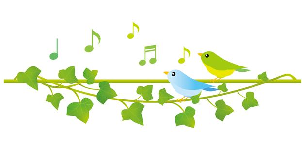 Chorus of Ivy and Birds