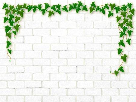 復古白色磚和常春藤框架