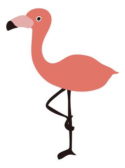 Bird / Flamingo