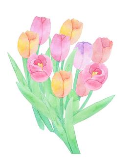 Tulip ★ 0369-F