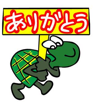 거북이 감사
