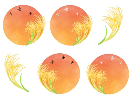 Circular background, dusk dragonfly and susuki