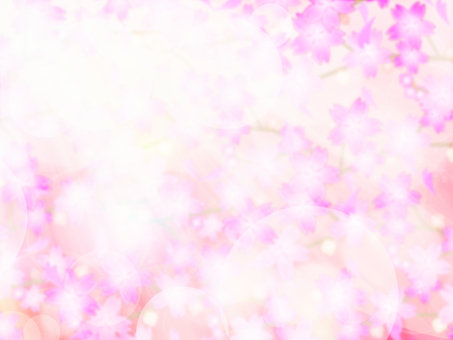 Cherry blossom background 47