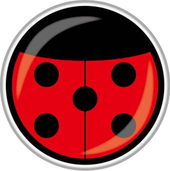 Icon (Ladybird)