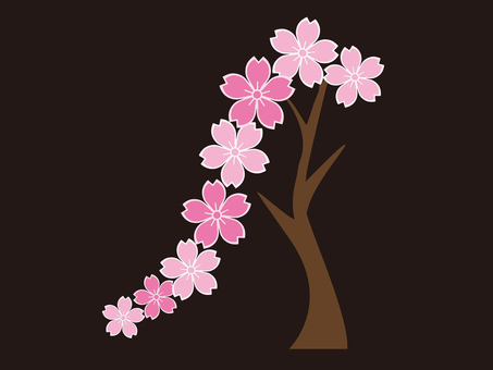 Weeping cherry tree d