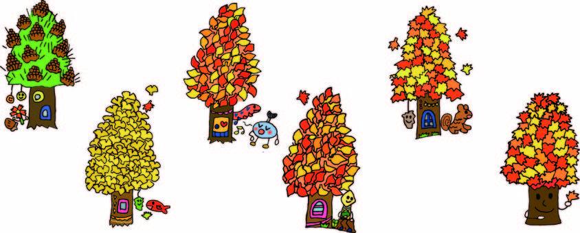 Fall trees in autumn