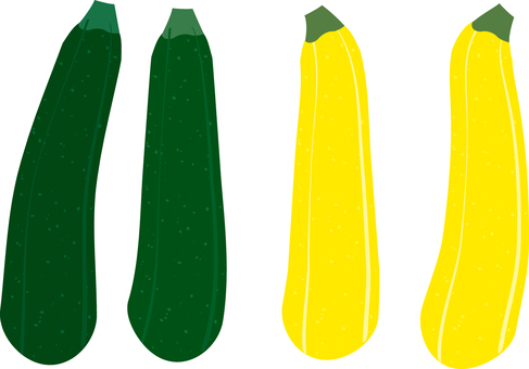 Food Series Vegetable Zucchini
