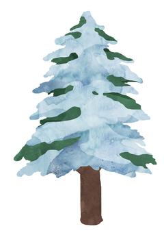 針葉樹 -雪- ③ 植物 水彩