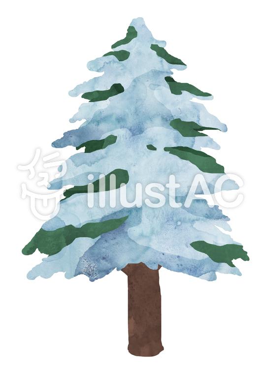 針葉樹 -雪- ③ 植物 水彩のイラスト