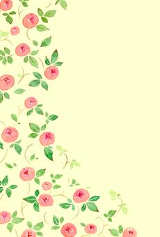 薔薇ポストカード01