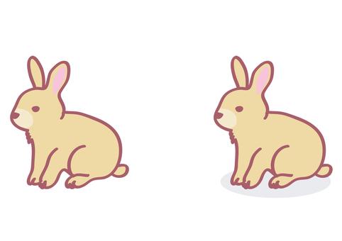 Usagi / Animals / 02