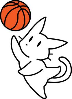 농구를하는 흰색 고양이