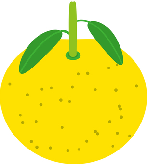 Food series fruit Yuzu