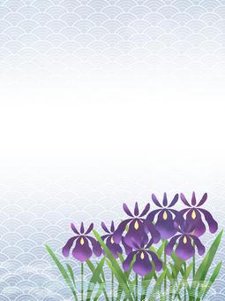 花フレーム 15 (花菖蒲)