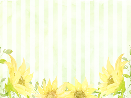 Watercolor hand-painted sunflowers and stripes green background