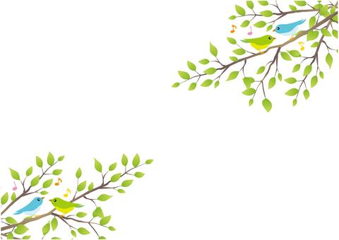 Bird's harmony background (white)