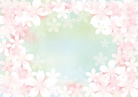 벚꽃의 꽃 73