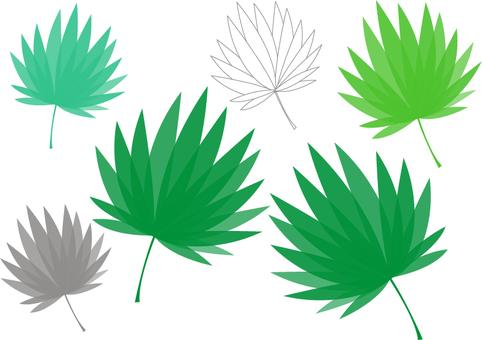 Leafy leaves