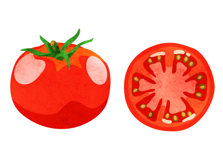 Food _ _ vegetables _ tomato _ watercolor