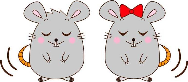 인사하는 쥐 커플