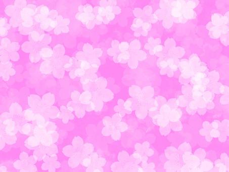 Sakura Pink Background Material Wallpaper Simple