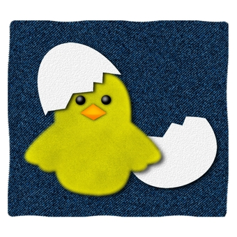 Denim chick