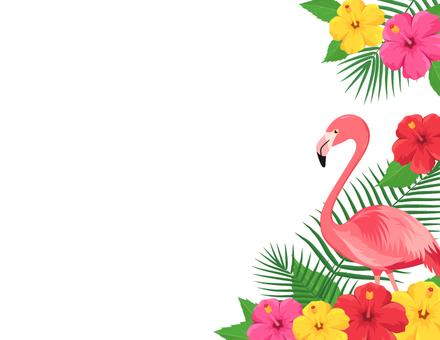 Flamingo's tropical frame
