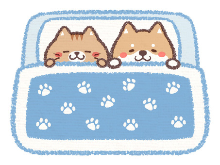 Dog Cat Futon