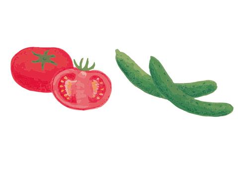 Fresh tomatoes and cucumbers