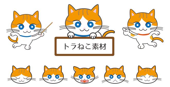 Tiger cat material
