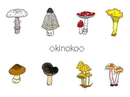 Various mushroom set