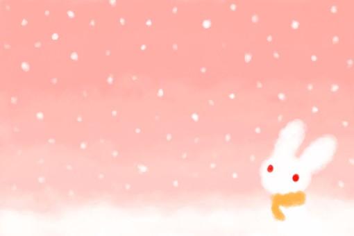 在黃昏的雪兔