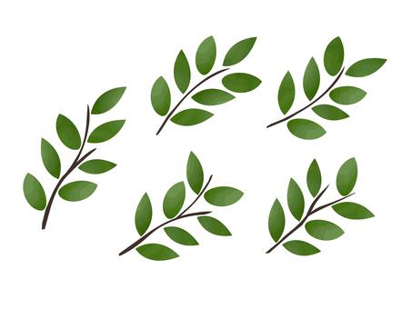 Illustration of decorative twigs